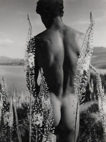 Männliches Aktfoto von Herbert List